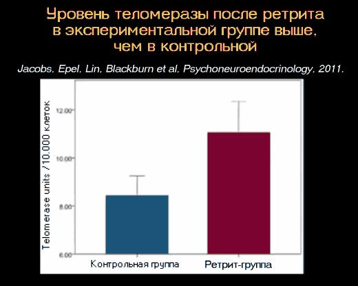 Уровень теломеразы после ретрита увеличился