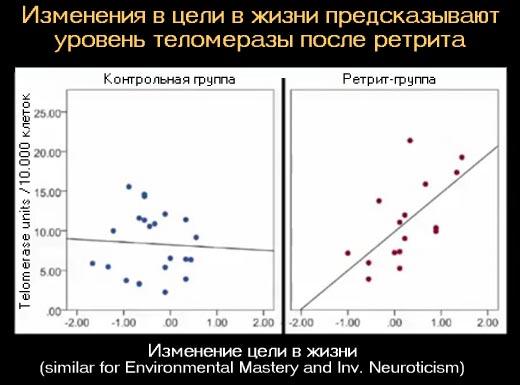 Взаимосвязь между уровнем теломеразы и целями в жизни